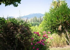 Landscaped Beauty with Views in Glide, OR