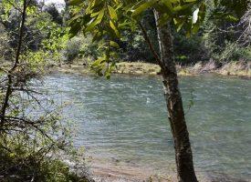 North Star Ranch Woodward Creek 115 acres